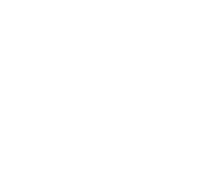 Guiding Light Home Inspections