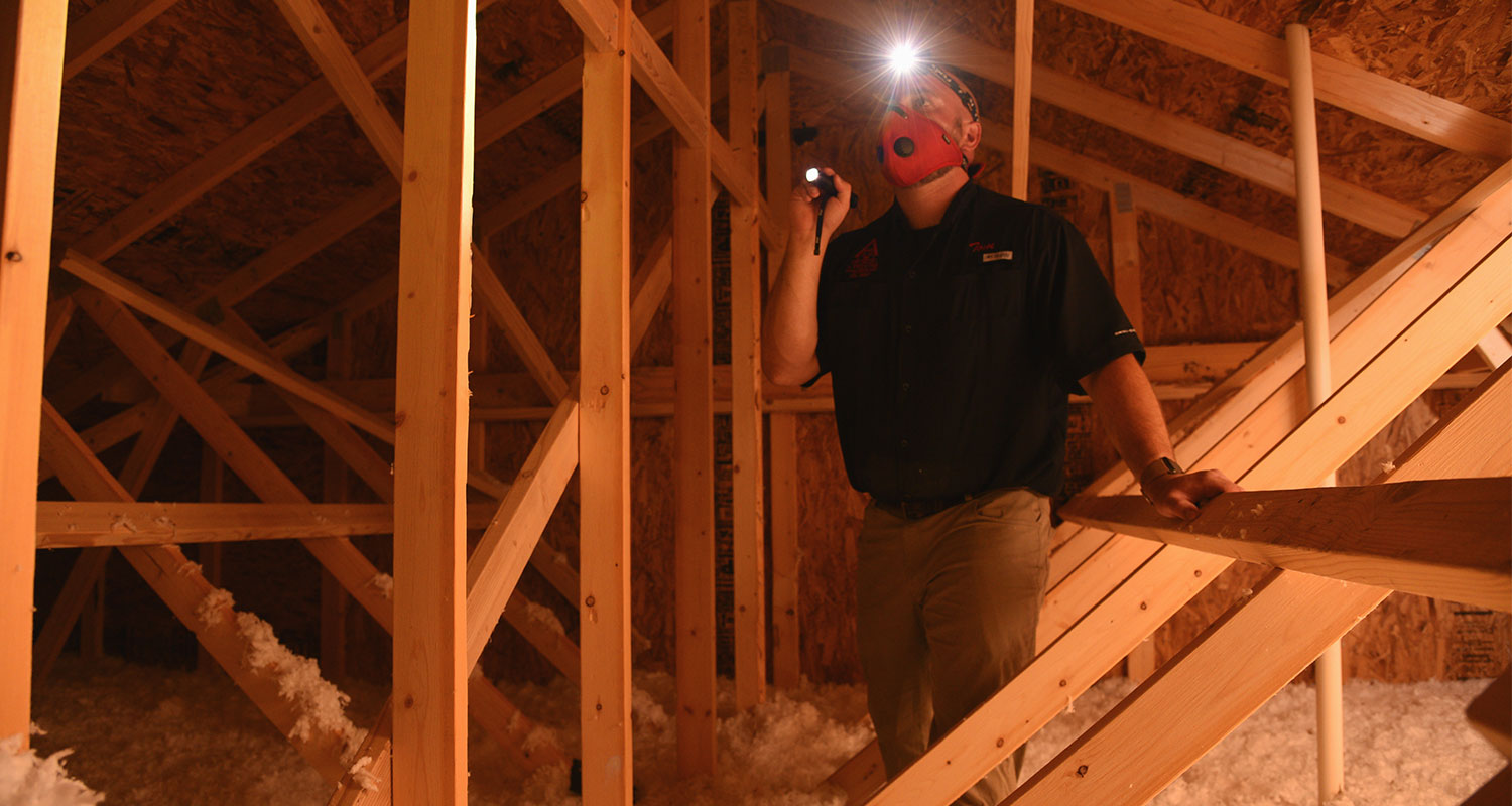 Tom, Inspecting the attic of a home in Colorado Springs